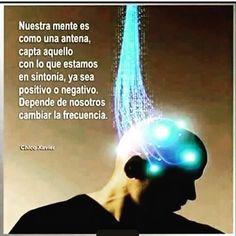 Nuestra mente es como una antena