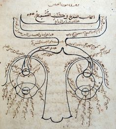 From the 11th century, a diagram of the nervous system showing nose, eyes and optic nerve. From 'Portraits of the Mind: Visualising the Brain from Antiquity to the 21st Century' by Carl Schoonover. More here http://blogs.discovermagazine.com/loom/2010/10/26/portraits-of-the-mind-the-looms-first-photoessay/
