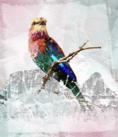grunge-textured-photoshop-mixed-collage-tutorial-photo-manipulation