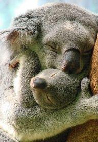 Mamma loves her baby