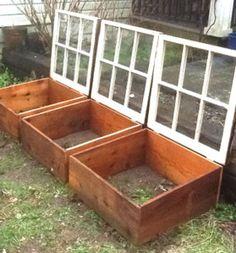 DIY-Greenhouses-apieceofrainbowblog (7)