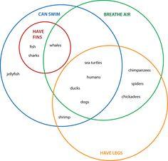 Edwards venn diagram sports school pinterest venn diagrams venn diagrams animals 4 set classification ccuart Gallery