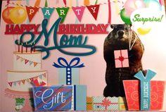 Groundhog's Day Birthday Day Card.  Happy Birthday Day Mom Card.