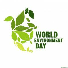 Let the peace of Nature flow in your life.. On World Environment Day and always !  Have a Great Environment Day