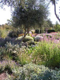 'Ch 18. Elusive landscapes: Australians and the Italian garden. Lambley Nursery. Ascot. Victoria.
