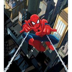 Fotomural Spiderman Ftdl-1923