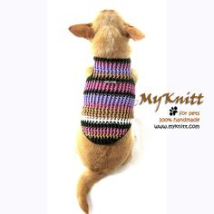 Purple Dog Sweater Harness Puppy Clothes D Ring Cat by myknitt #dog #pet #chihuahua #crochet #knit #handmade #diy