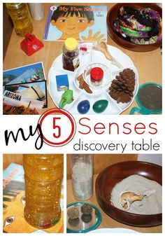 Learning About 5 Senses Activity Discovery Table from Little Bins for Little Hands