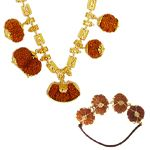Rudraksha Therapy   Rudraksha Science Therapy   Rudraksha Collection   Rudra centre Canada
