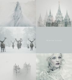 aly-naith - Posts tagged courts of prythian aesthetic Aesthetic Collage, White Aesthetic, A Court Of Mist And Fury, Ice Queen, Snow Queen, Sarah J Maas, Character Aesthetic, Faeries, Aesthetic Wallpapers