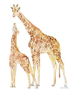 Giraffes Watercolor Painting - 5 x 7 - Giclee Print Reproduction - African Animals Mother and Baby Giraffe - Nursery Art Baby Giraffe Nursery, Giraffe Art, Nursery Art, Baby Giraffes, Giraffe Drawing, Giraffe Pictures, Giraffe Painting, Watercolor Animals, Watercolor Paintings