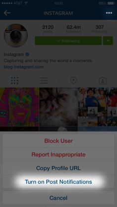 "Instagram adds post notifications - Instagram introduced a new feature that allows you to receive push notifications ""when your favorite accounts post a photo or video."""