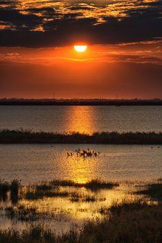 Po ( River ) Delta Italy - Sunset