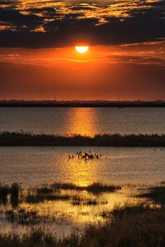 Po ( River ) Delta Italy - Sunset