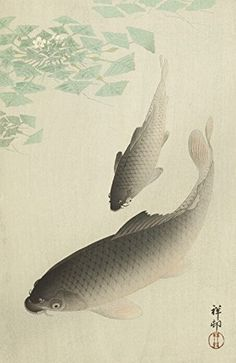 "Japanese Art Print ""Carp (Koi)"" by Ohara Koson Shin Hanga and Art Reproductions http://www.amazon.com/dp/B016VY04GS/ref=cm_sw_r_pi_dp_hxctwb0Y0KHK9"