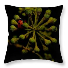 Beauty from the dark Throw Pillow for Sale by Helen Kelly