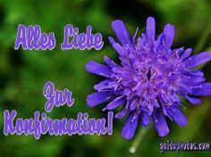 Kostenlose Karten zur Konfirmation - http://www.gaidaphotos.com/kostenlose-karten-zur-konfirmation/