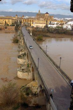 Puente Romano. Vista desde la Torre de la Calahorra