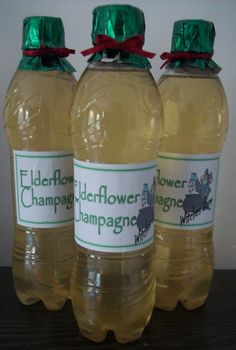 Another addition to my hampers is Elderflower Champagne 4 litres hot water sugar Juice and zest of four lemons 2 tablespoons white w. Elderflower Champagne, Champagne Recipe, Elderberry Recipes, Moisturizer For Dry Skin, Edible Gifts, Summer Drinks, Home Brewing, Alcohol, Herbs