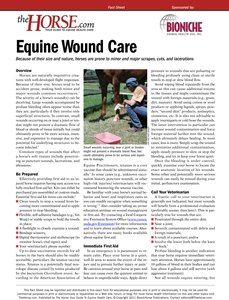 An overview of wound care for horses, including a checklist for your first aid kit and when to see the vet. Download now.