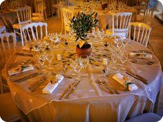 Idée de thème pour un mariage : L'olivier, tout un symbole