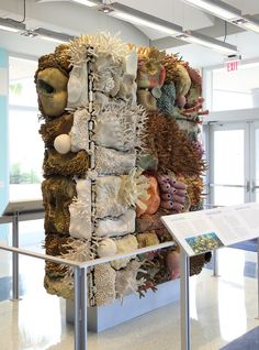 Courtney Mattison's ceramic coral reefs are all intricately hand-sculptured, she…
