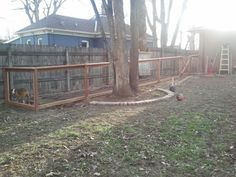 Dog Run Ideas On Pinterest Dog Runs Dog Area And Fencing
