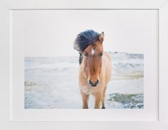 All Is Quiet by Jenni Kupelian at minted.com