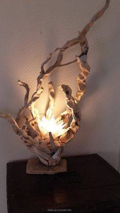 In some of the earlier projects of recycling we have used the driftwood in making different table lamps and that idea was very widely appreciated and acclaimed by the folks. Many people have…