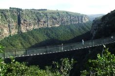 Oribi Gorge Find Cheap Hotels, Sun City, Hotel Reservations, Hotel Deals, The Locals, Eagles, South Africa, River, Architecture