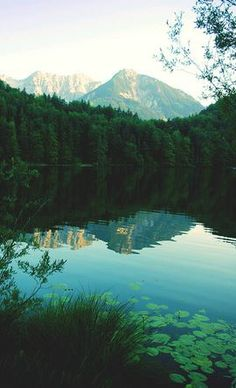 Glassy Water and Mountains