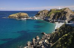 lundy-island-campsite-large.jpg (1000×657)
