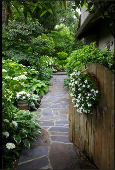 Side Garden Walkway