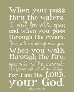 Isaiah 43:2-3a--You will go through things in this life. But God goes with you and preserves you all the way through.