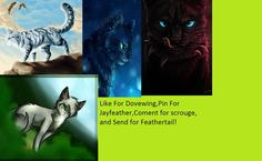 Jayfeather is my favorite and I guess I choose scourge too cuz of  this description XD