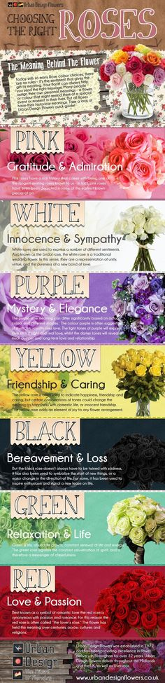 Roses Are One of The Most Popular Wedding Flowers And each color has a different meaning. Choose the right color with this interesting guide from Urban Design Flowers