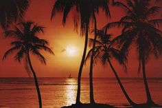 caribbean sunset <3