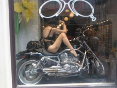 Shop window at Haarlemmerstraat, Amsterdam. Cats madly in love with motorcycle and fake pussycat doll