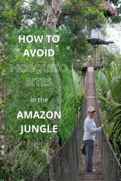 How to avoid mosquito bites on your travels - tips and advice