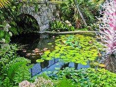 Fairchild Tropical Botanical Garden; Coral Gables, FL- www.fairchildgarden.org