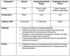 Neuro vascular assessment Nursing Assessment, Nursing Mnemonics, Neurological Assessment, Compartment Syndrome, What Is Nursing, Nursing Students, Nursing Schools, Nursing Career, Pharmacology