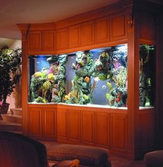 Amazing Brown Modern Large Aquariums In Home Interior Design Like Wall Painting