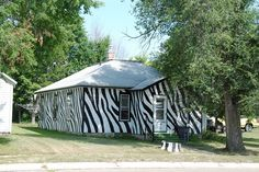 Zebra House in Bassett, NE