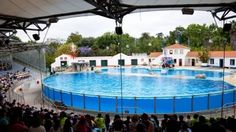 10 best things to do in Lisbon with children - With this selection of Lisbon child-friendly attractions, families can spend fun filled days exploring museums, science pavilions, aquariums, zoos, castles and gardens - with special prices! - http://www.welovelisbon.net/articles/10-best-things-do-lisbon-children