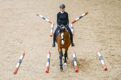 opener Better dressage through cavaletti training? Horse Riding Tips, Horse Tips, Riding Gear, Trail Riding, Equestrian Outfits, Equestrian Style, Equestrian Problems, Horse Exercises, Training Exercises