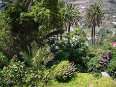 Valle Gran Rey, La Gomera. I have been here.