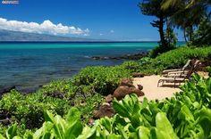 Maui Home - 4039 LOWER HONOAPIILANI - Napili/Kahana/Honokowai