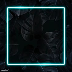 how do html color codes work Black Phone Wallpaper, Framed Wallpaper, Neon Wallpaper, Wallpaper Quotes, Iphone Background Images, Love Backgrounds, Leaf Background, Neon Design, Instagram Frame