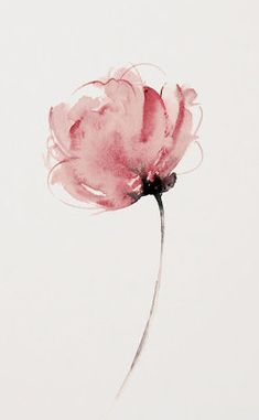 Beste Foto-Pfingstrosen acuarela Konzepte Die Pfingstrose kann in . - Beste Foto-Pfingstrosen acuarela Konzepte Die Pfingstrose kann in …, - Watercolour Painting, Watercolor Flowers, Peony Painting, Watercolor Tattoos, Abstract Watercolor, Watercolors, Art Floral, Skin Images, Line Art