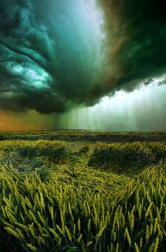 """Against the Wind"" Horizons by Phil Koch - Milwaukee, Wisconsin"